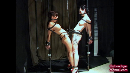 BDSM Joined in Friendship and Rope
