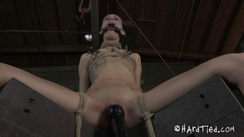 bdsm HT - Strong Vibration - Hailey Young - Jun 20, 2012 - HD