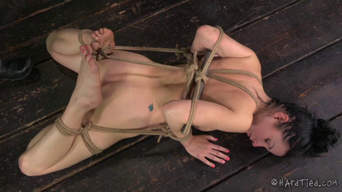 BDSM HardTied  Veruca James  The Good Little Slave