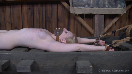 bdsm Fetish Pup - BDSM, Humiliation, Torture