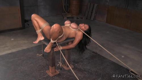 BDSM X Marks the Spot - Maxine X & Jack Hammer