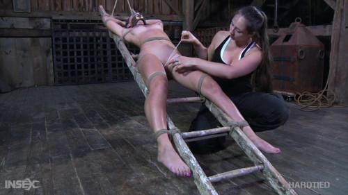 BDSM Bdsm HD Porn Videos Escalated
