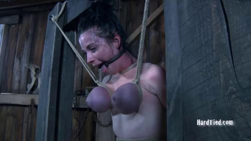 BDSM HD Bdsm Sex Videos Dairy Pillows