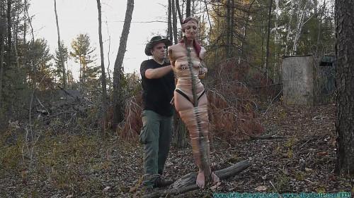 BDSM Tree Taped