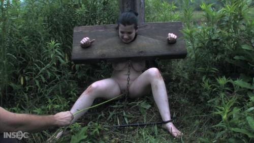 BDSM Sybil Hawthorne - Stocked Slut Part 2