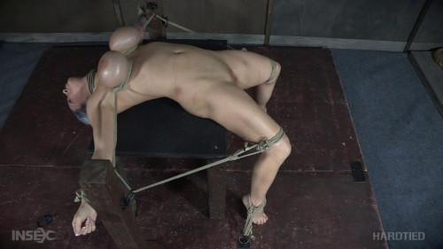 BDSM 30HH, Alyssa Lynn