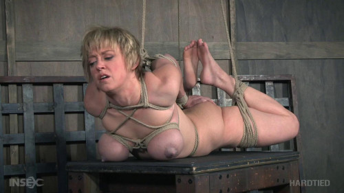 BDSM Hardtied 2017 Complete, Part 3