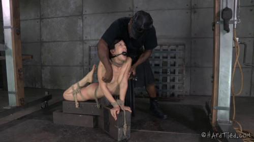 BDSM Bondage Therapy - Elise Graves, Jack Hammer