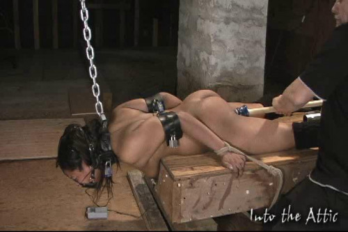 BDSM Mega Unreal Wonderfull Sweet Vip Collection Into The Attic. Part 7.