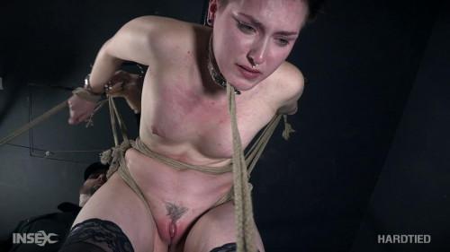 BDSM Down The Rabbit Hole