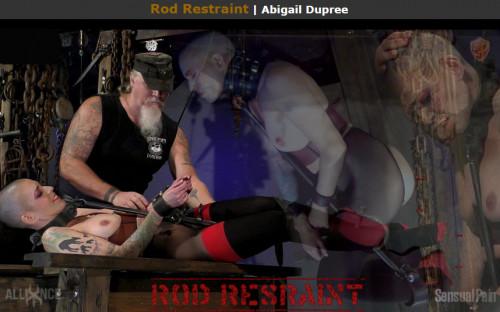 BDSM Sensualpain Rod Restraint