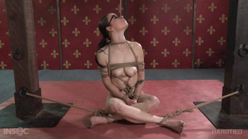 BDSM Hard Case - Ivy Addams