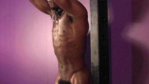 Gay BDSM Reputation Part 1-7