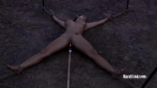 BDSM Vulnerable (Trina Michaels and Pd)