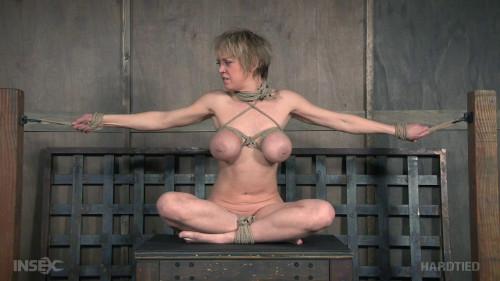 BDSM Category 5- Dee Williams