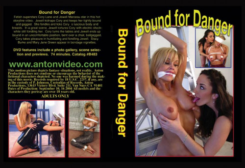 bdsm Bound For Danger 1