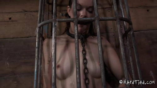 BDSM Sasha, Hazel Hypnotic