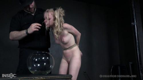 BDSM Bound to Test Part 3 - Alice
