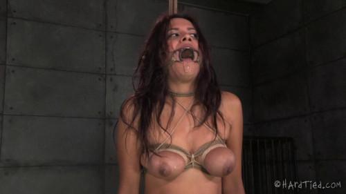 BDSM HT - A Lying Sinner - Selma Sins and Jack Hammer