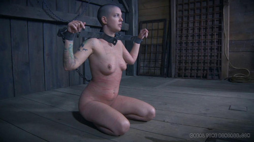 BDSM Abigail Dupree The Extended Feed of Miss Dupree Part 4