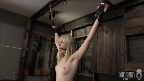 BDSM Blonde and Submissive part 1
