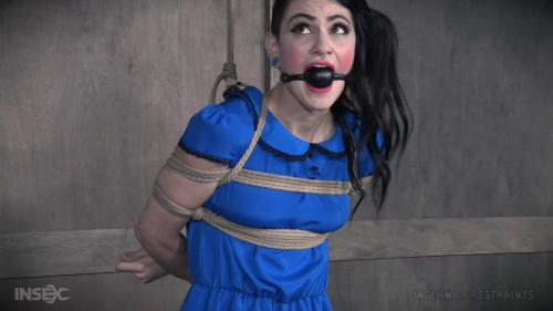 BDSM Torture Doll