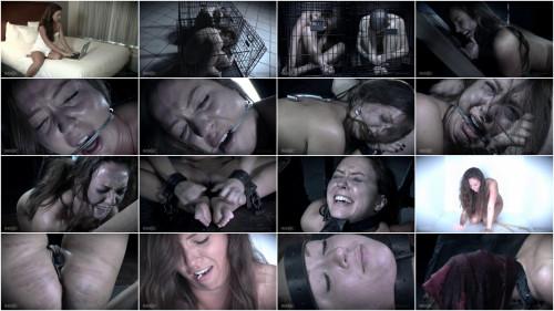 BDSM Hacker Capture Suffer Cry