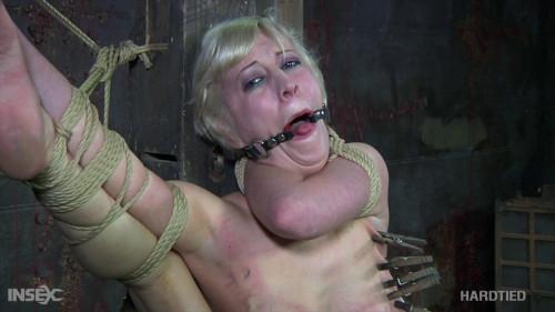 BDSM HdT  Cherry Picking Part 1 - Cherry Torn (2020)