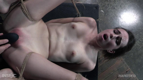 BDSM Entwined
