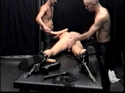 Gay BDSM Reflex