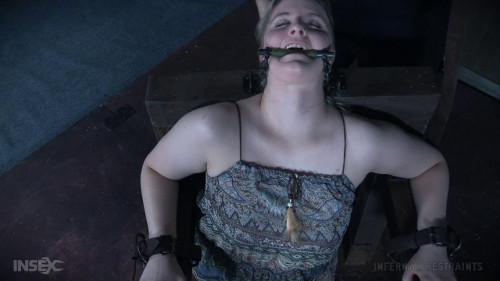 BDSM Tinker Toy