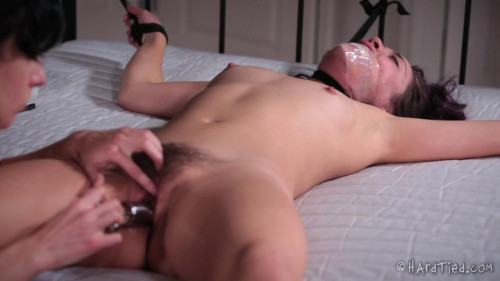 BDSM Spread and Exposed