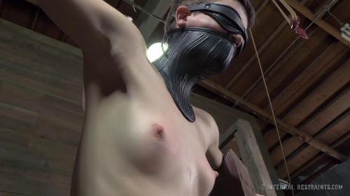 BDSM Stuck in Bondage, Again