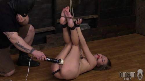 BDSM The guest of honor to use her