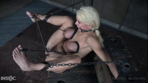 BDSM K Taylor