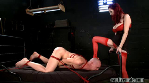 Femdom and Strapon Magic Full Collection CaptiveMale. 13 Clips. Part 2.