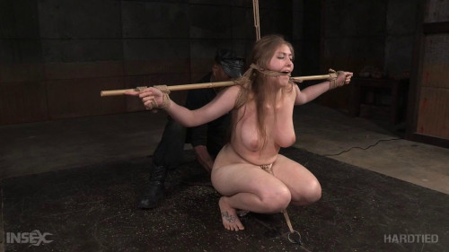 bdsm Pain for Rayne