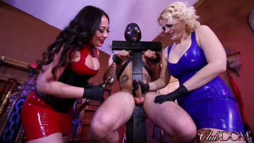 Femdom and Strapon Milking their slave after 30 days