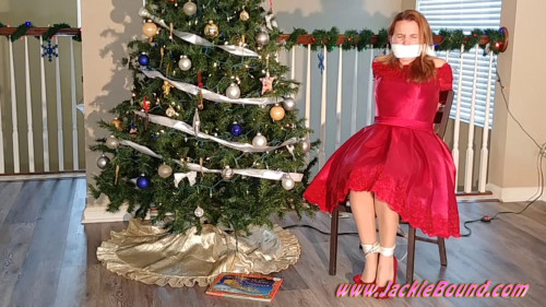 BDSM After the Holiday Party