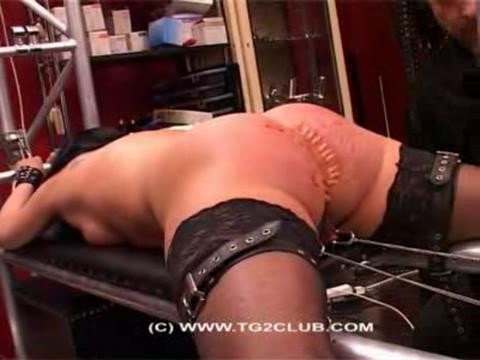 BDSM TG2 Club Vi Part 15