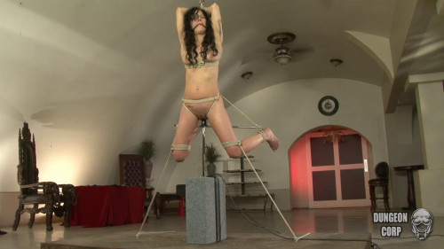 BDSM Sadie Dawson - Suspended and Fucked
