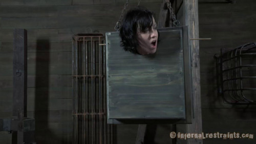 BDSM Boxed and Sex  Elise Graves