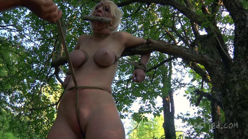 BDSM A Walk In the Park