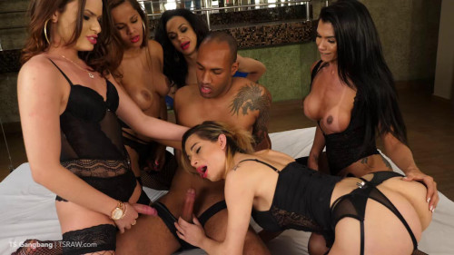Best Gangbang Orgy SheMale