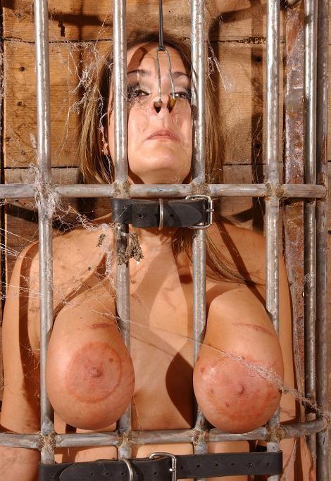 Caged Sexy Pig
