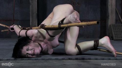 HdT - Mei Mara - Painful Delights BDSM