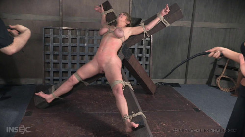 Rough Bondage & Breast Whipping For Dee Williams