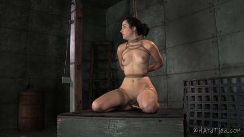 HT - A Blaze-in Bondage - Jack Hammer, Marley Blaze