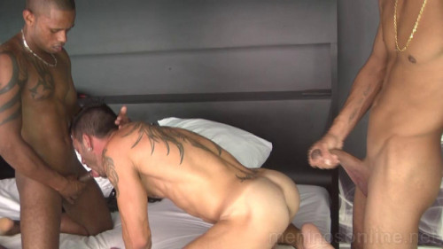 Andy Star & John & Adriano Gay Clips