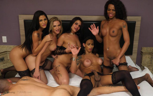 Exlusive Orgy With Beauty Trannies